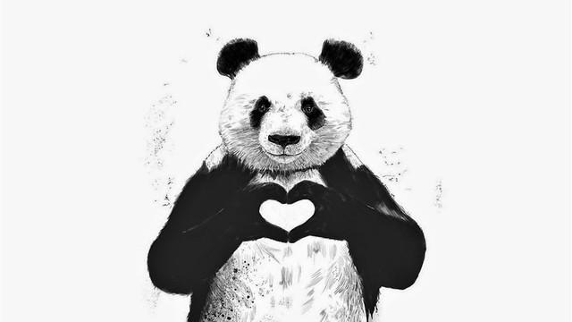 Pandas Lindos, Tiernos Y Kawaii Para Fondos De Celular